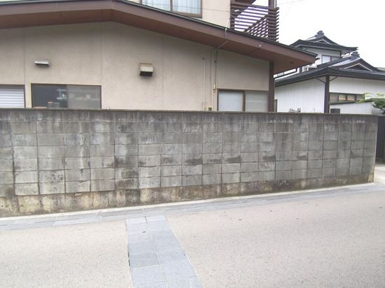 http://www.shishitai.com/assets_c/2009/01/100_1562-thumb-550x412-37.jpg